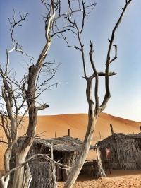 Wahiba Sands, Desert, Oman