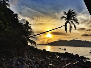 Sun, Sundowner, Plams, Beach, Perhentians, Malaysia